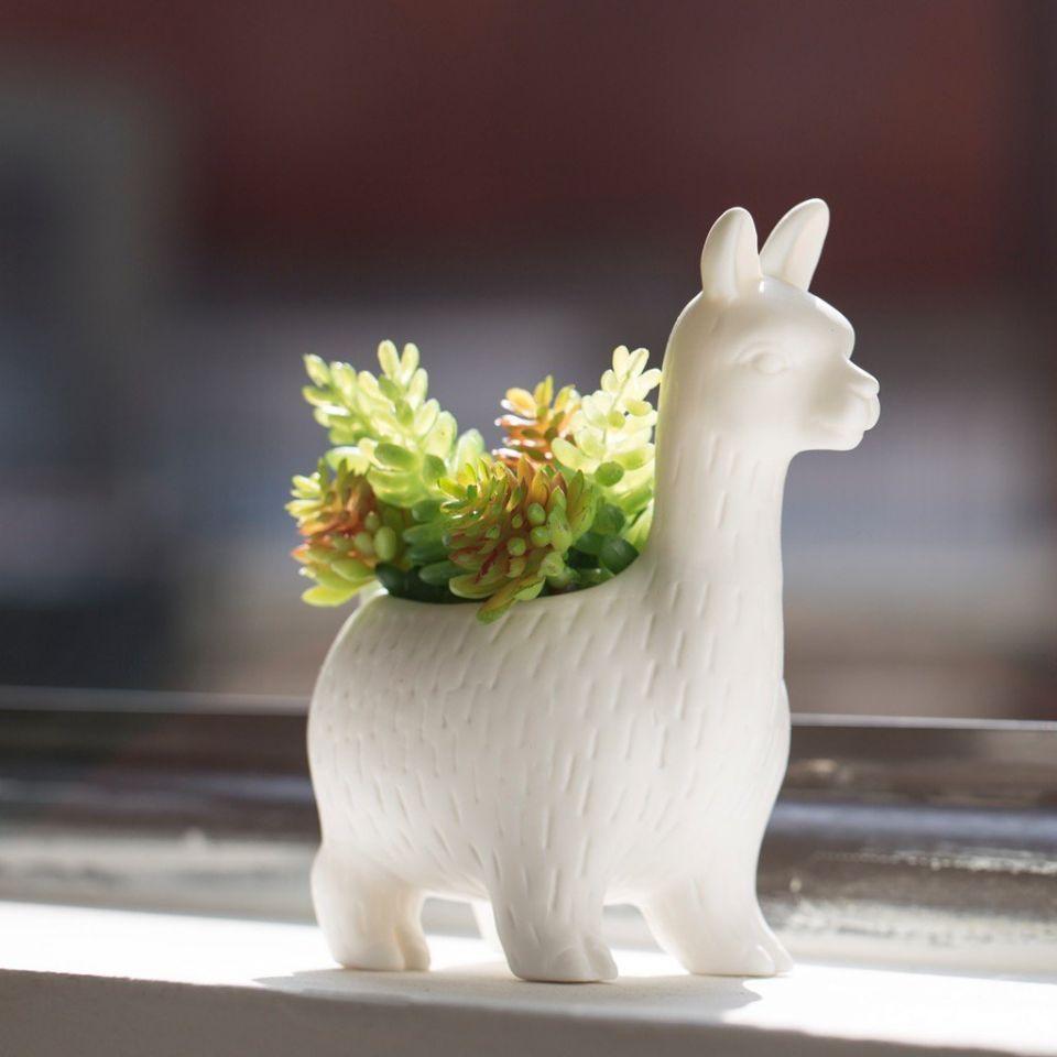 pot de fleurs lloyd le lama kikkerland