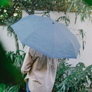 parapluie poisson bleu doiy